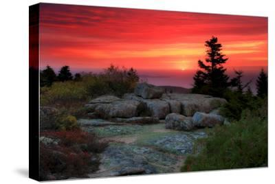 The Rising Sun over Atlantic Ocean and Boulders and Flora Atop Cadillac Mountain-Robbie George-Stretched Canvas Print