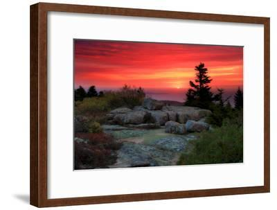 The Rising Sun over Atlantic Ocean and Boulders and Flora Atop Cadillac Mountain-Robbie George-Framed Photographic Print