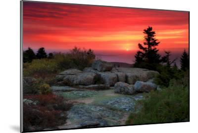 The Rising Sun over Atlantic Ocean and Boulders and Flora Atop Cadillac Mountain-Robbie George-Mounted Photographic Print