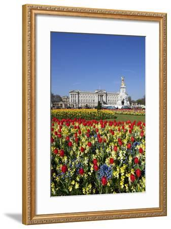 Buckingham Palace and Queen Victoria Monument with Tulips, London, England, United Kingdom, Europe-Stuart Black-Framed Photographic Print
