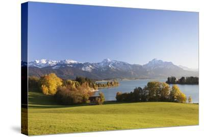 Forggensee Lake and Allgau Alps, Fussen, Ostallgau, Allgau, Allgau Alps, Bavaria, Germany, Europe-Markus Lange-Stretched Canvas Print