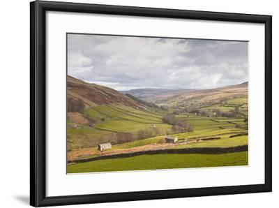 Swaledale in the Yorkshire Dales National Park, Yorkshire, England, United Kingdom, Europe-Julian Elliott-Framed Photographic Print