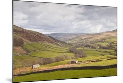Swaledale in the Yorkshire Dales National Park, Yorkshire, England, United Kingdom, Europe-Julian Elliott-Mounted Photographic Print