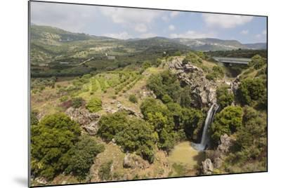 Sa'Ar Waterfall at the Hermon Nature Reserve, Golan Heights, Israel, Middle East-Yadid Levy-Mounted Photographic Print