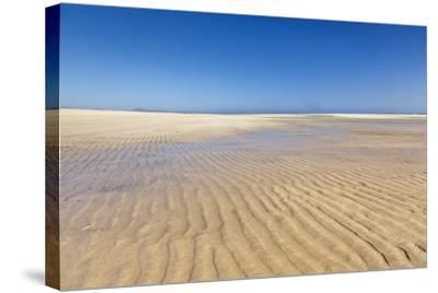 Playa De Sotavento, Risco Del Paso, Fuerteventura, Canary Islands, Spain, Atlantic, Europe-Markus Lange-Stretched Canvas Print