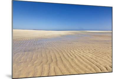 Playa De Sotavento, Risco Del Paso, Fuerteventura, Canary Islands, Spain, Atlantic, Europe-Markus Lange-Mounted Photographic Print