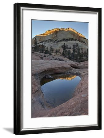 Pool in Slick Rock at Dawn, Zion National Park, Utah, United States of America, North America-James Hager-Framed Photographic Print