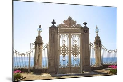 Gate to the Bosphorus, Dolmabahce Palace, Istanbul, Turkey, Europe-Neil Farrin-Mounted Photographic Print