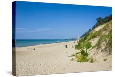 Indiana Sand Dunes, Indiana, United States of America, North America-Michael Runkel-Stretched Canvas Print