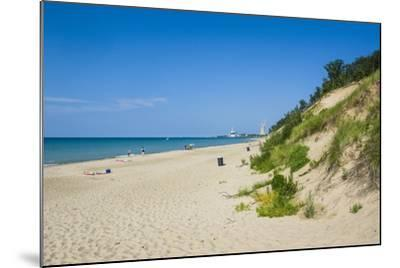 Indiana Sand Dunes, Indiana, United States of America, North America-Michael Runkel-Mounted Photographic Print