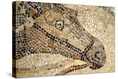 Horse Roman Floor Mosaic--Stretched Canvas Print