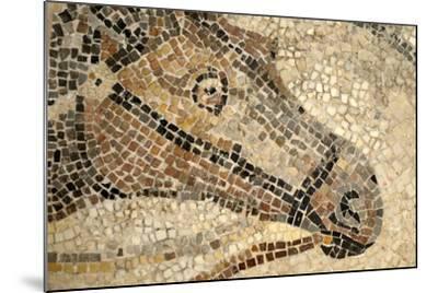 Horse Roman Floor Mosaic--Mounted Giclee Print