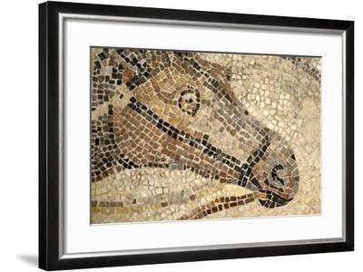 Horse Roman Floor Mosaic--Framed Giclee Print