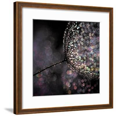 Chandelier-Ursula Abresch-Framed Premium Photographic Print