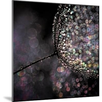 Chandelier-Ursula Abresch-Mounted Premium Photographic Print