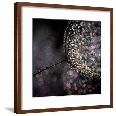 Chandelier-Ursula Abresch-Framed Photographic Print