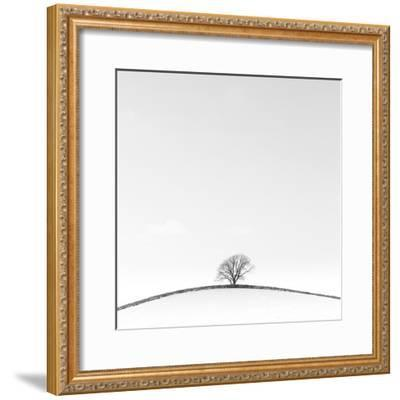 On the Crest-Doug Chinnery-Framed Photographic Print