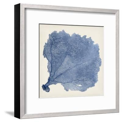 Sea Fan V-Vision Studio-Framed Art Print