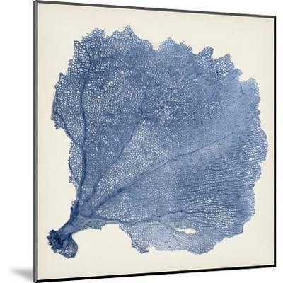 Sea Fan V-Vision Studio-Mounted Art Print