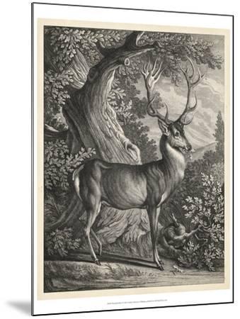 Woodland Deer I-Ridinger-Mounted Art Print