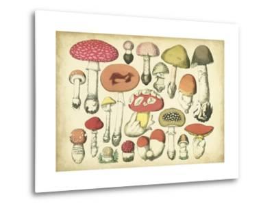 Vintage Mushroom Chart-Vision Studio-Metal Print