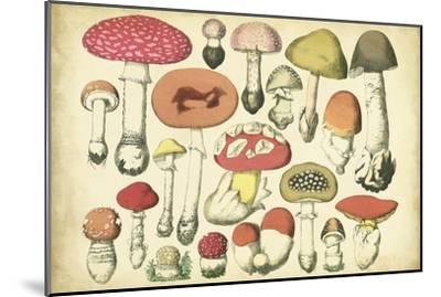 Vintage Mushroom Chart-Vision Studio-Mounted Art Print