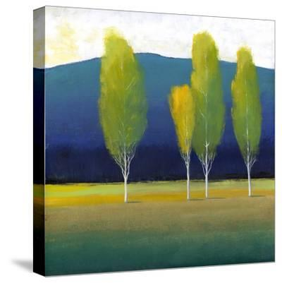 Glowing Trees I-Tim O'toole-Stretched Canvas Print