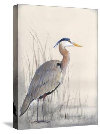 Non-Embellished Keeping Watch I-Tim O'toole-Stretched Canvas Print