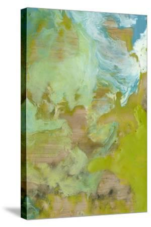 Amorphous II-Jennifer Goldberger-Stretched Canvas Print