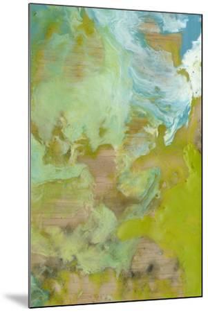 Amorphous II-Jennifer Goldberger-Mounted Art Print