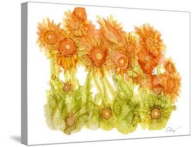 Sunlit Poppies I-Cheryl Baynes-Stretched Canvas Print
