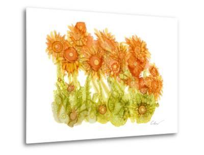 Sunlit Poppies I-Cheryl Baynes-Metal Print