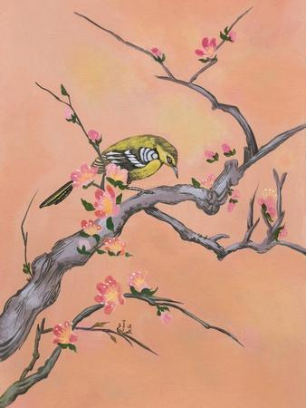 Asian Bird Illustration I-Judy Mastrangelo-Premium Giclee Print
