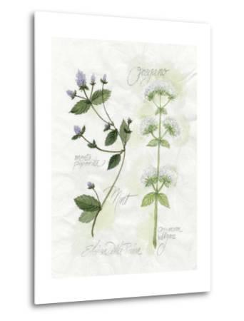 Oregano and Mint-Elissa Della-piana-Metal Print