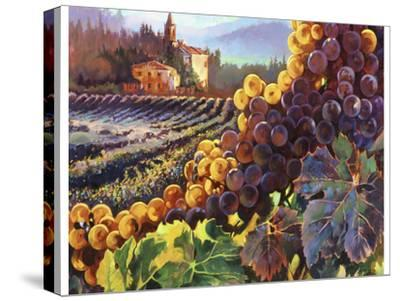 Tuscany Harvest-Clif Hadfield-Stretched Canvas Print