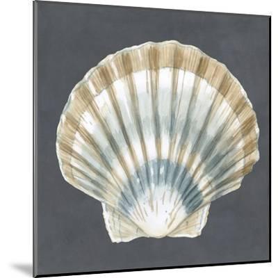 Shell on Slate III-Megan Meagher-Mounted Art Print