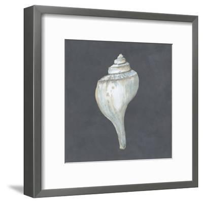 Shell on Slate IV-Megan Meagher-Framed Art Print