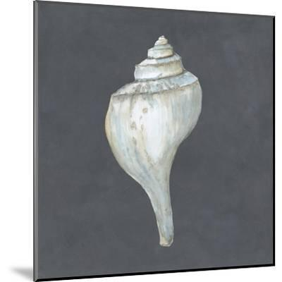 Shell on Slate IV-Megan Meagher-Mounted Art Print