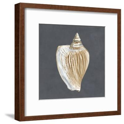 Shell on Slate VI-Megan Meagher-Framed Art Print