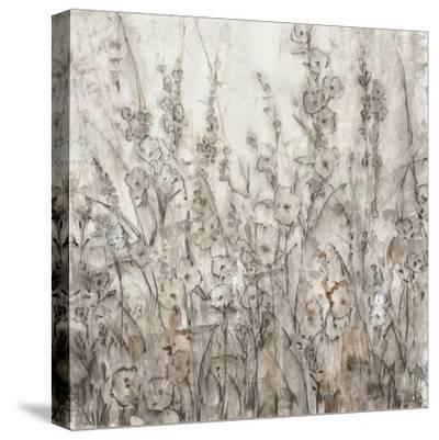 Shadows I-Tim O'toole-Stretched Canvas Print
