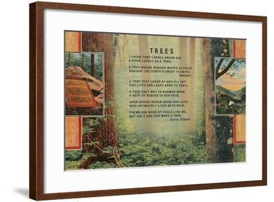 Joyce Kilmer Trees Poem, Forest--Framed Giclee Print