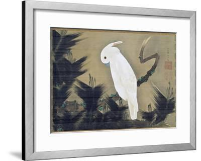 White Cockatoo on a Pine Branch-Ito Jakuchu-Framed Giclee Print