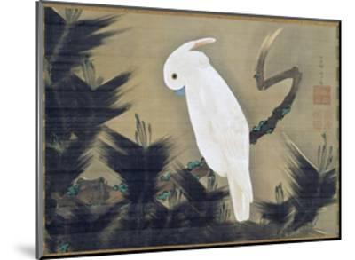 White Cockatoo on a Pine Branch-Ito Jakuchu-Mounted Giclee Print