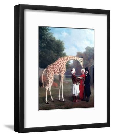 Nubian Giraffe-Jacques-Laurent Agasse-Framed Premium Giclee Print