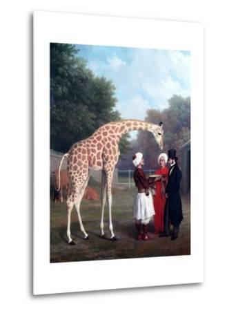 Nubian Giraffe-Jacques-Laurent Agasse-Metal Print