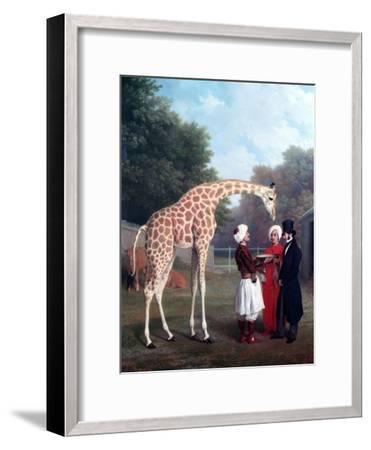 Nubian Giraffe-Jacques-Laurent Agasse-Framed Giclee Print