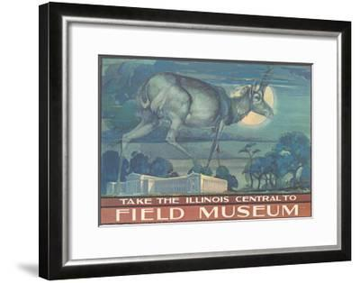 Poster for Field Museum with Horned Antelope--Framed Giclee Print