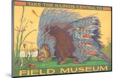 Poster for Field Museum with Porcupine--Mounted Giclee Print