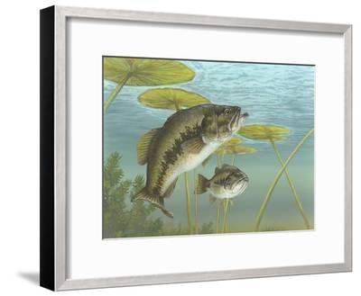Largemouth Bass--Framed Giclee Print