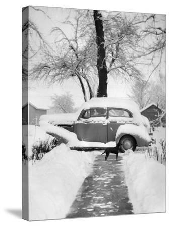 Snowy Scene in Illinois, Ca. 1940--Stretched Canvas Print